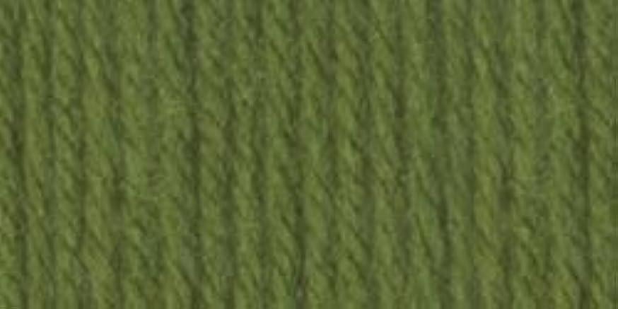 Bulk Buy: Vanna's Choice Yarn (3-Pack) Kelly Green 860-172