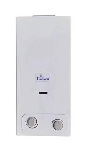 TTulpe Indoor B-6