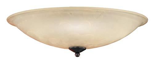Fischer & Honsel Deckenleuchte 2x E27 max.40W rostf. Glas champ D.40cm, 82872, braun