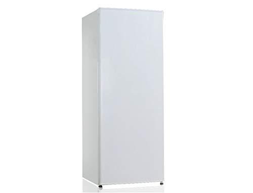 commercial petit refrigerateur 1 porte puissant