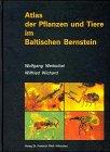 Atlas der Pflanzen und Tiere im Baltischen Bernstein
