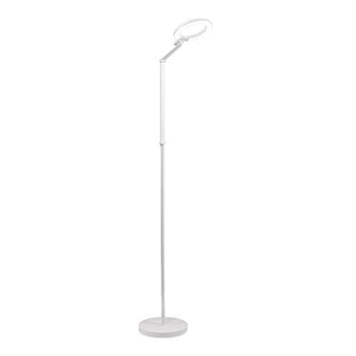 Luces Decorativas LED lámpara de pie, Sala Pavimento Lámparas, ligero redondo luz de lectura de pie ajustable con brazo de la lámpara de la sala de estar Lámparas (Color : White)
