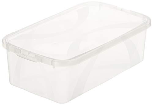 AmazonBasics Lot de 4 boîtes de rangement - 4x5l