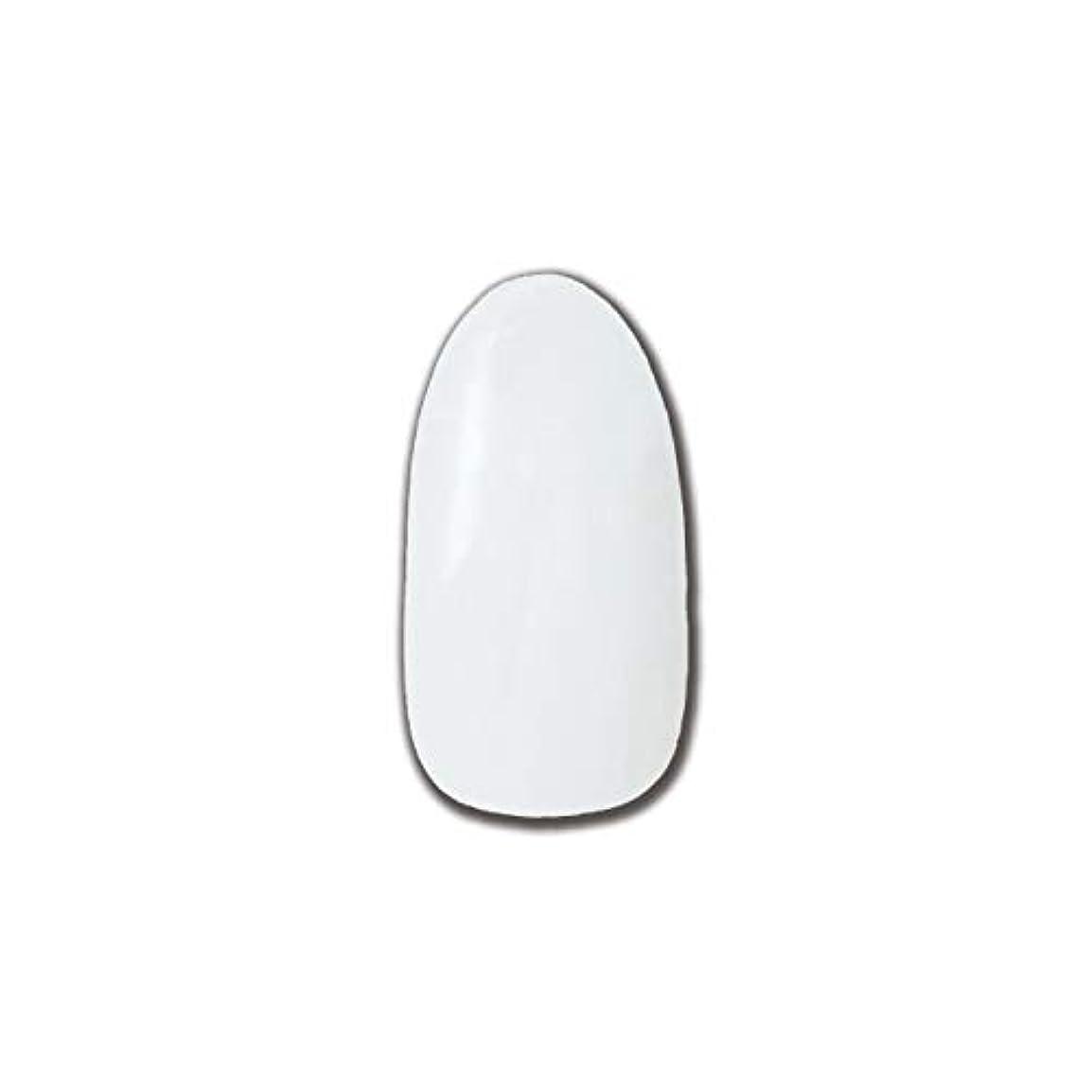分類ご飯案件T-GEL COLLECTION カラージェル D195 チタンホワイト 4ml