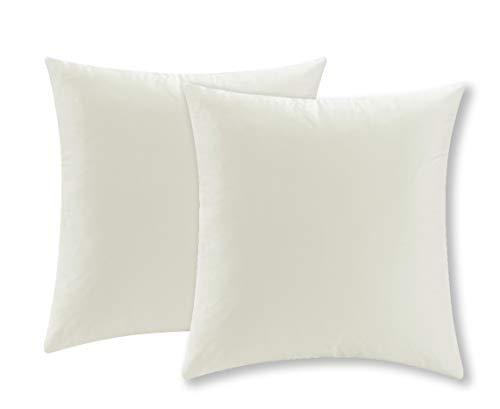 COMFORTLAND 2er Set Samt Soft Solid Dekorative Quadrat Wurf Kissenbezüge Set Kissen Fall für Sofa Schlafzimmer, 40x40cm, Weiße