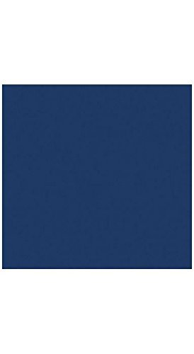 12 x 12 Cardstock - Navy (50 Qty.) | Perfect for creating Business Cards, Layer Cards, Invitations, Crafts, various Artistic purposes and so much more! | 100lb Paper | 1212-C-103-50