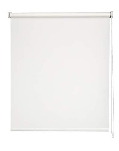 Easydeco - Estor Enrollable Daylight Translúcido (Blanco, 120_x_250_cm)