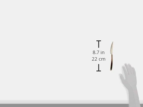 BUGATTI GLNU-021F06/6 Glamour - Juego de 6 Cuchillos de Postre (Acero y plástico, 16 x 26 x 3 cm), Color Negro