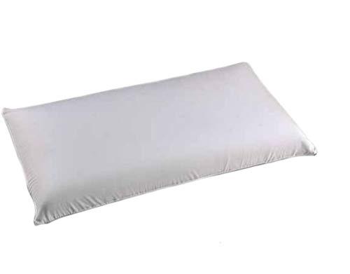 MICAMAMELLAMA Almohada VISCOELASTICA 100% - Antiácaros y Antibacterias - Tejido Aloe Vera - Doble Funda con Cremallera - Ergonomica - 70cm