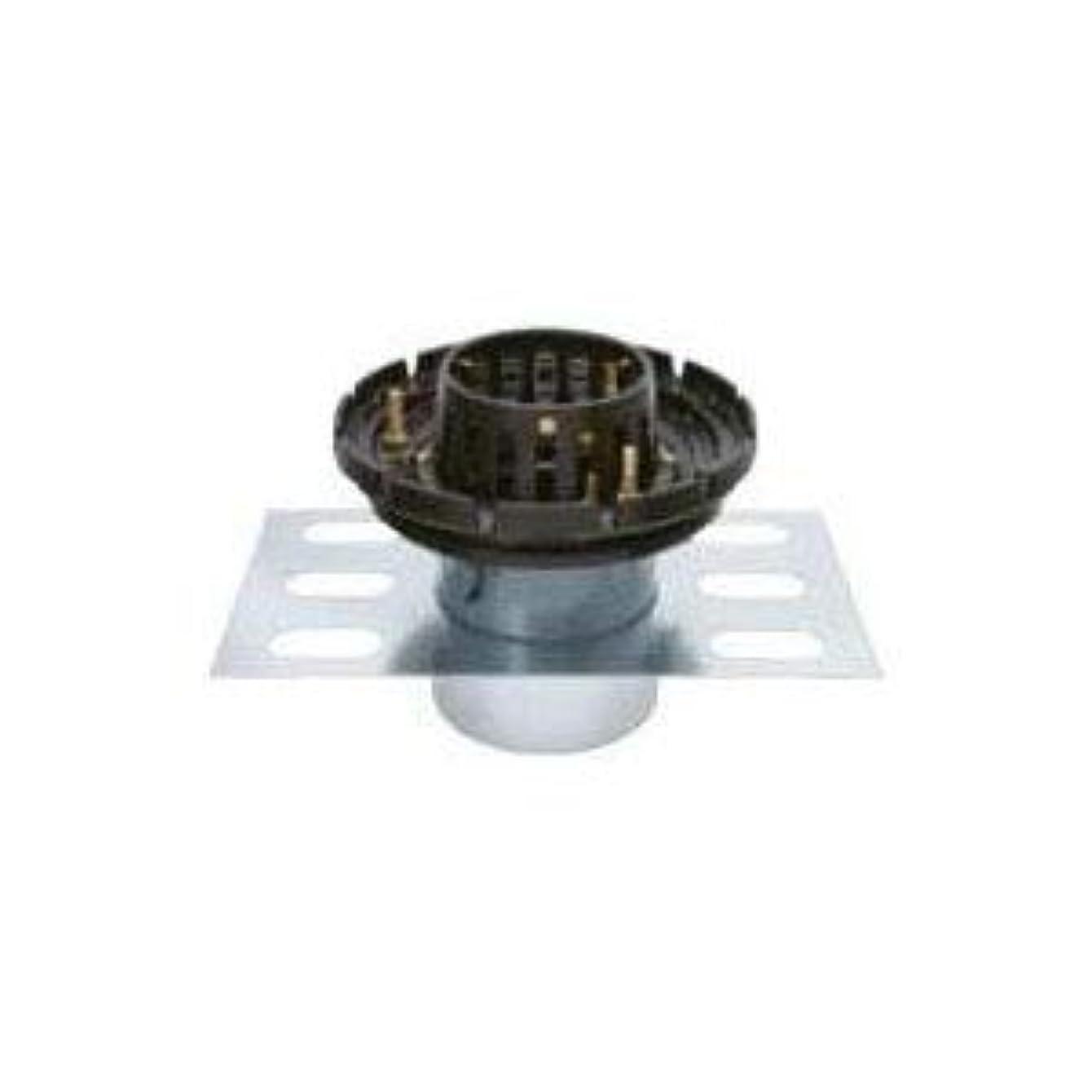 イル囲い合意カネソウ 鋳鉄製ルーフドレイン たて引き用(呼称50) ※メーカー直送代引不可 EDSBW-2-50