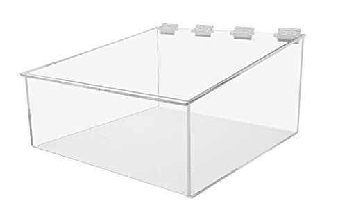"""Marketing Holders 10""""W Bread Pastry Bin Top Opening Dry Food Baked Goods Candy Display Clear Acrylic"""