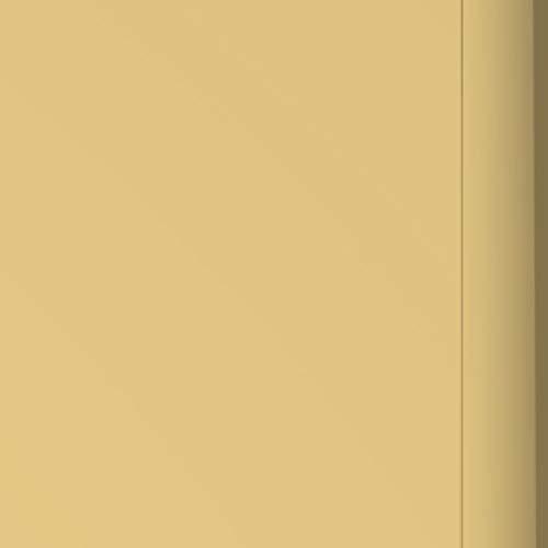 Ring Video Doorbell Pro Faceplate - Gold Metal