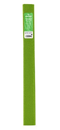 Canson Rouleaux de 10 Papiers crépons 32 g/m² 50 x 250 cm Vert Printemps