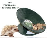 Chinchilla, Hedgehog, Prairie Dog Heavy Metal Treadmill Exercise Wheel 14' Diameter Green