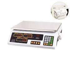 EISEN Balanza bascula con Impresora de Ticket Sencilla con bateria Interna hasta 30kg