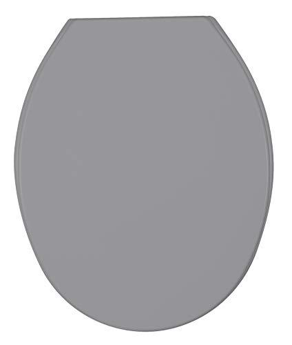 Allstar 23374100 WC-Sitz Thermoplast Cetona, Toilettensitz, Fix-Clip Hygiene Befestigung, 35.5 x 44.5 cm, Grau