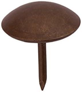 Sysfix 3312023 100 stuks pak beklede nagels, behangnagels, 20 mm, ijzer, bronskleurig