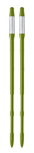SUSTEE Wasserstandsmesser (2-er-Set), Der Gießanzeiger für Pflanzen, Hilft Pflanzen richtig zu gießen, Einfach zu benutzen, Benötigt Keine Batterien, Hergestellt in Japan (Groß, Grün)