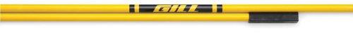 Gill Athletics Essentials High Jump Crossbar