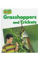 Grasshoppers and Crickets 0817255907 Book Cover