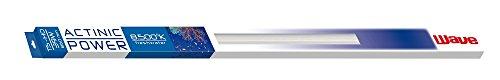 WAVE Actinic Power T5 Lampe pour Aquariophilie 54 W