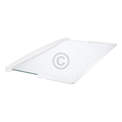 Glasplatte Glasscheibe Platte Scheibe Einlegefach Fach 477x277mm mit Leisten für Kühlschrank ORIGINAL Miele 5318731