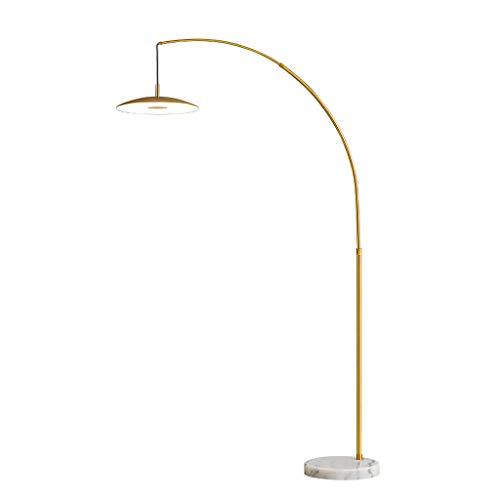 JLXW oogbescherming LED Arc vloerlamp Moderne flexibele zwanenhals staande lamp in hoogte verstelbaar binnenlamp voor woonkamer slaapkamer, 27 W, afstandsbediening