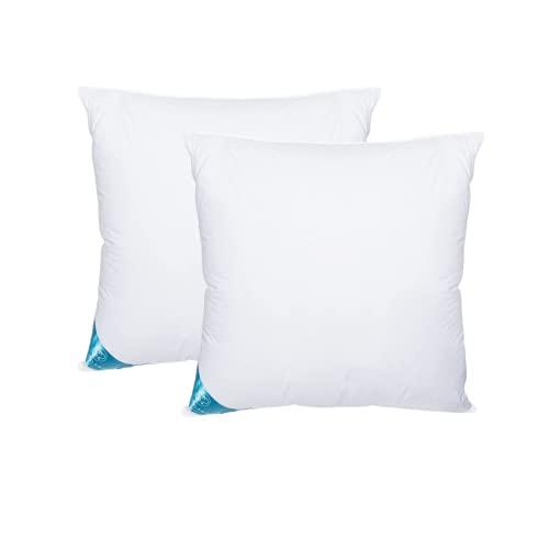 Sandaro Home kopfkissen 80x80 2er Set | federkissen 80 x 80 cm mit 100% natürlichen Federfüllungen nur, Kissen Set mit Gänsefedernfüllung im Baumwollbezug Für erholsamen Schlaf, 1500 Gramm -SHK815F