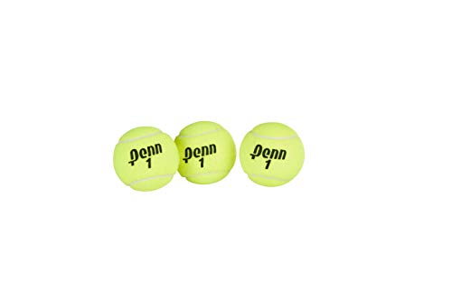 Penn Championship Tennis Balls - Extra Duty Felt Pressurized Tennis Balls - 24 Cans, 72 Balls