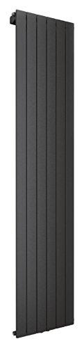 Wohnraum-Heizkörper Rom, Mittelanschluss, 200x46 cm, 1127 Watt Leistung, anthrazit, Design-Heizkörper für Zweirohrsysteme