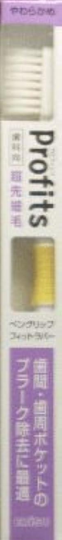 荒涼としたサーフィンキャッププロフィッツK31?やわらかめ1本×2 377