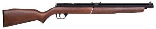 Benjamin 392 Bolt Action Variable Pump Air Rifle (.22)