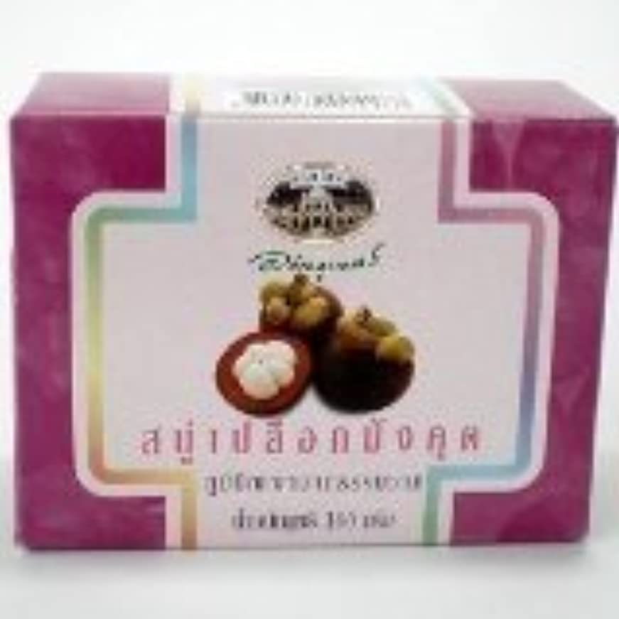 チーズ船酔い横向き新しいabhabibhubejhr Mangosteen Peel Soap 100?g
