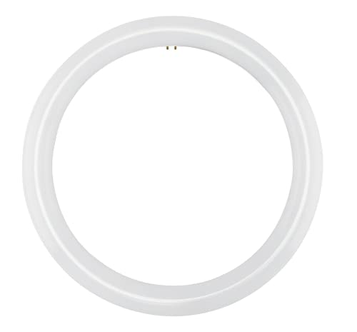 NYLL - 12 Inch/ 12' Plug & Play T9 Circline LED Lamp - Daylight (6000K) Circular Bulb Directly Relamp 32 Watt Fluorescent Bulb FC12T9/D, FCL32 (Without rewiring or Modification) - Ballast Required!