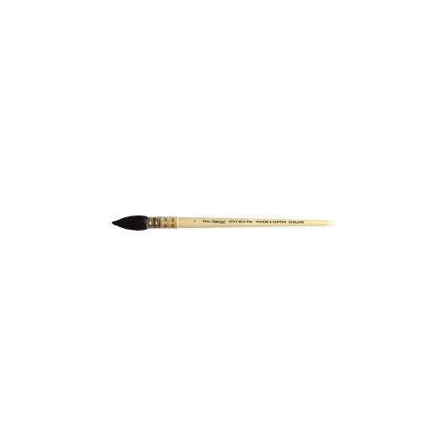 Winsor & Newton Pennello In Puro Scoiattolo Per Acquerelli Manico Corto - Tondo N 2 - 10 Mm