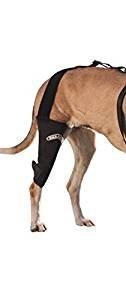 "WalkAbout Canine Knee Brace (XLarge 16-18"" Left Leg Measurement 1"