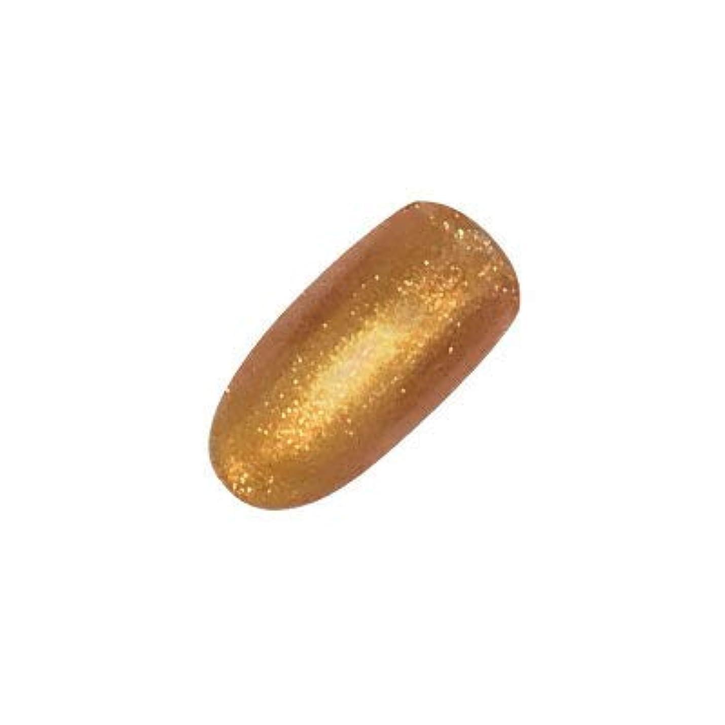 銅問題表面的なアイニティ カラージェル 040 イエローゴールド 5g