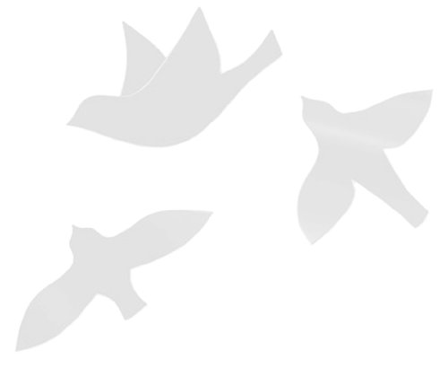 umbra ウォールデコレーション WALL BIRD WALL DECOR(ウォールバード 3P) ホワイト2470105‐660