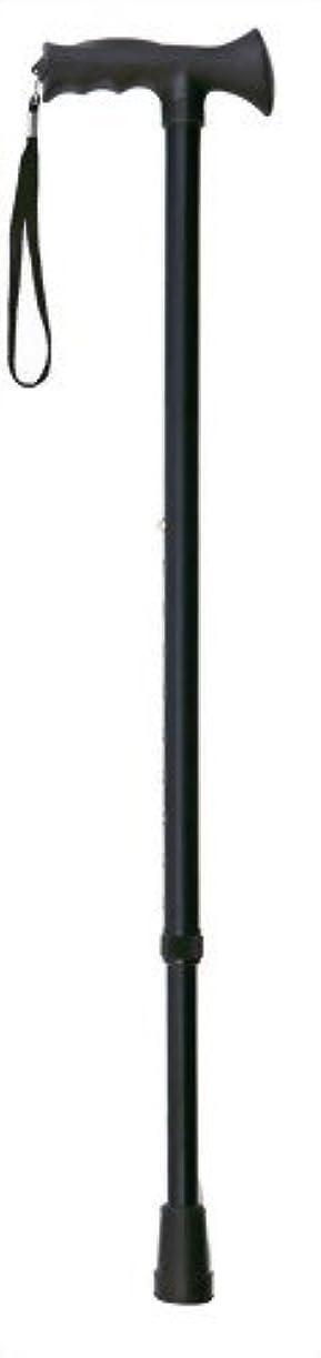 お酢メイド群集RQシリーズ 伸縮ステッキ/スポーティータイプ ブラック