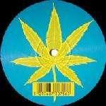 Rio Rhythm Band - Ti Amo Semprini - Vinyl Solution