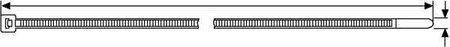 Mercagas-Flangia nylon: 2,5 x 100 mm (Confezione da 100 ud) mercatools