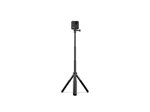 GoPro Max Grip + Tripod (Official Accessory), black & Amazon Basics GoPro Carrying Case - Small