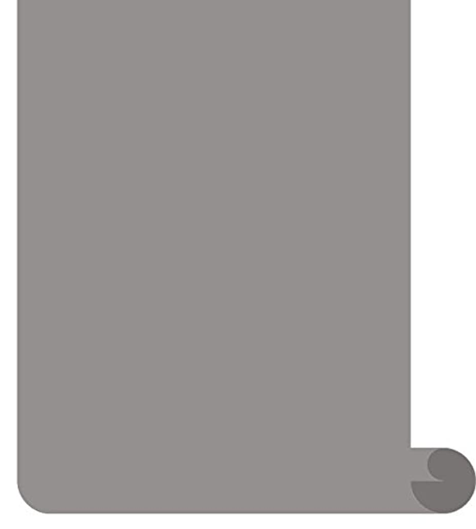 Siser EasyWeed Heat Transfer Vinyl HTV for T-Shirts 12 Inches by 3 Feet Roll (Gray)