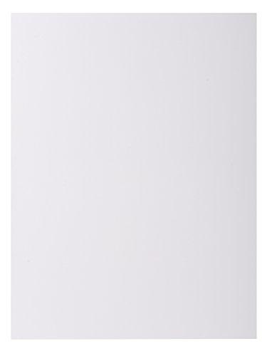 Exacompta 800017E - Lote de 100 Subcarpetas Rock'S 80, Color Blanco