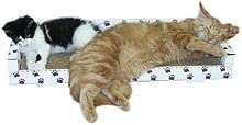 Cat Claws Couch Challenge the lowest price Max 79% OFF
