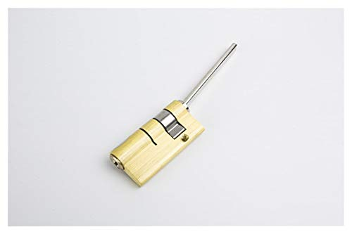HXYIYG Door Barrel Lock Special Lock Core For Automatic Fingerprint Lock Cylinder With Tail Core 2keys Anti-theft Door Lock Core Lock Cylinder (Color : 55x17 square rod)