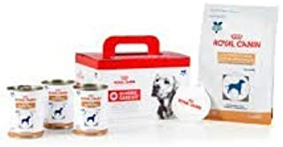 Royal Canin Veterinary Diet Canine Gastrointestinal Home Care Kit for Dogs