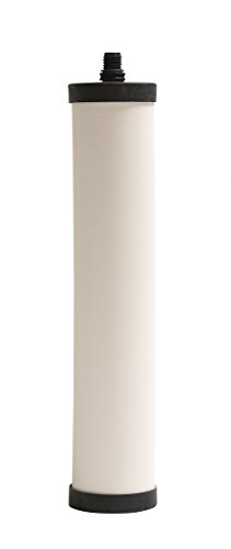 Franke USA FRC06 Undersink Water Filtration Replacement Filter for FRC Canisters, Reduces Chlorine, Small, White