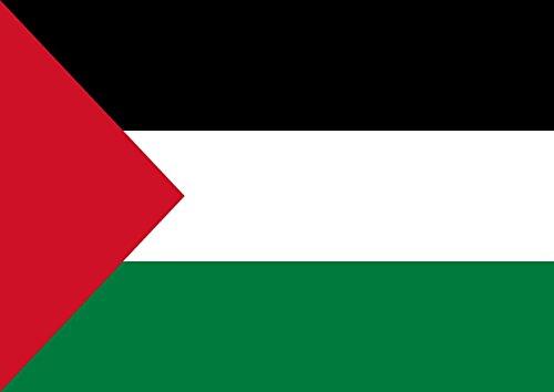 Vlag Van Palestina Beste Kleur Foto Foto Unieke Print A3 Muurposter