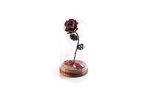 Rosa Eterna de Hierro Forjado La Bella y La Bestia con Grabado Personalizado, pétalos caídos en cúpula de cristal sobre base de madera (Roja/Negra)